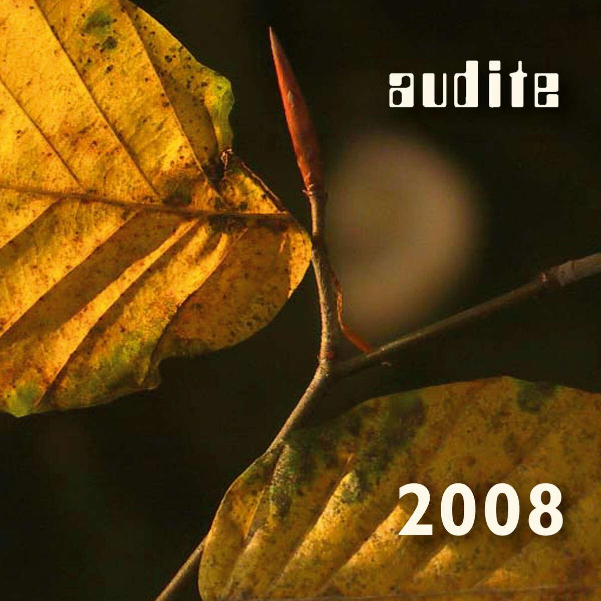 audite catalogue 2008 & CD - Tchaikovsky: Symphony 5 & Schumann: Piano Concerto